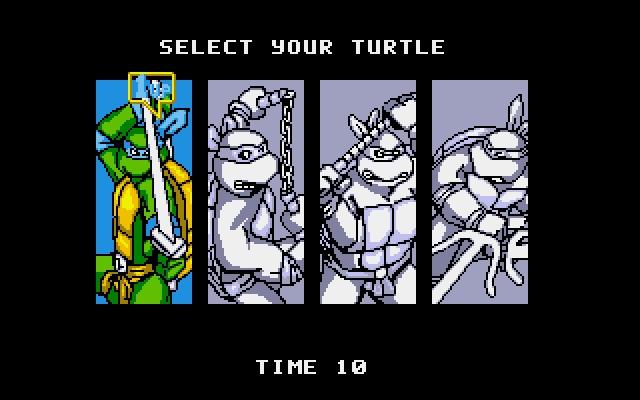 turtles_img.jpg